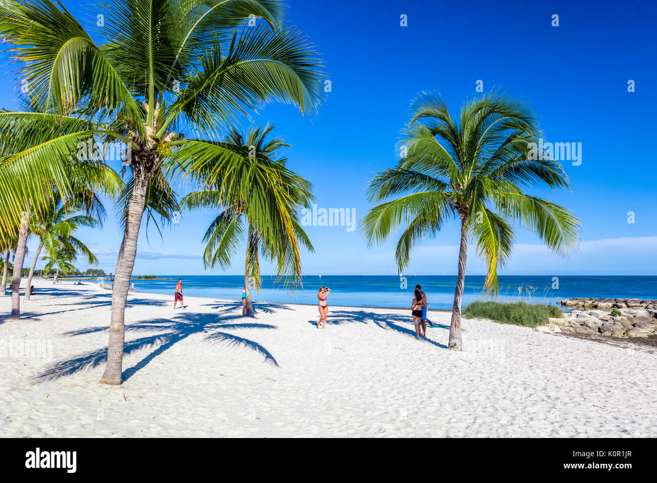 Palm trees and people on sandy Smathers Beach on the Atlantic Ocean in Key West Florida on a blue sky summer day - Stock Image