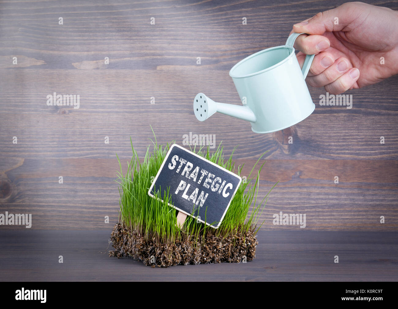 Strategic Plan concept. Fresh and green grass on wood background. - Stock Image