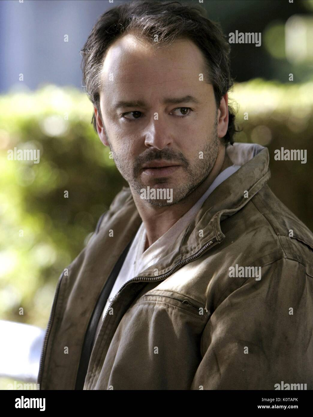 images Gil Bellows