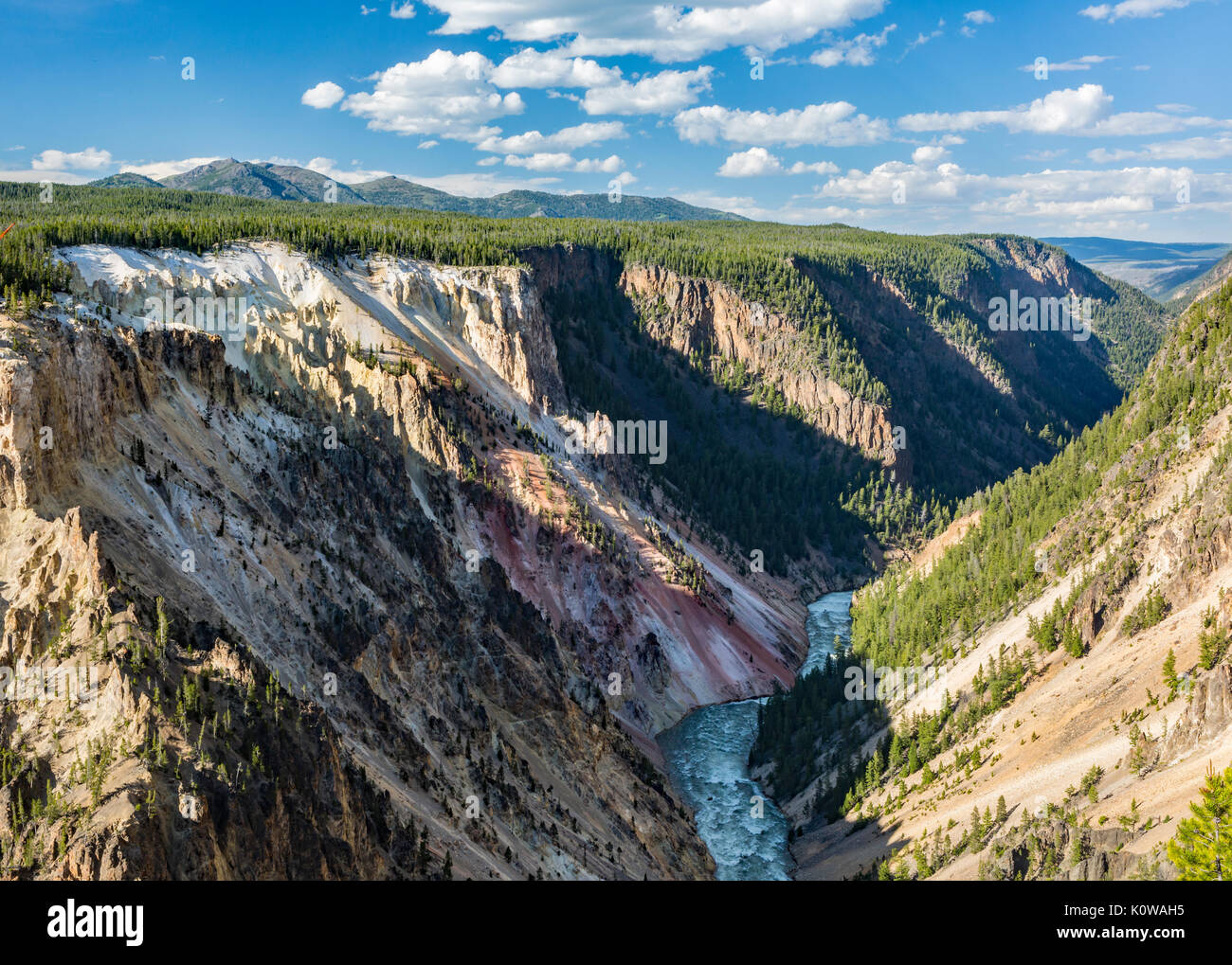 Forested walls of the lower part of the Grand Canyon of the Yellowstone from the South Rim in Yellowstone National Park, Wyoming - Stock Image