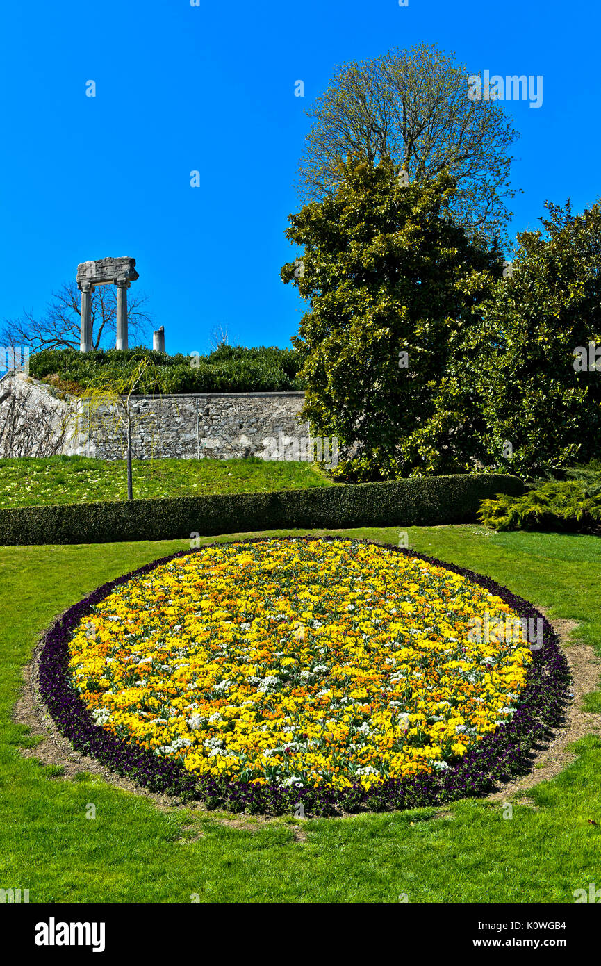 Medallion of spring flowers in the park, roman columns behind, Nyon, Vaud, Switzerland - Stock Image