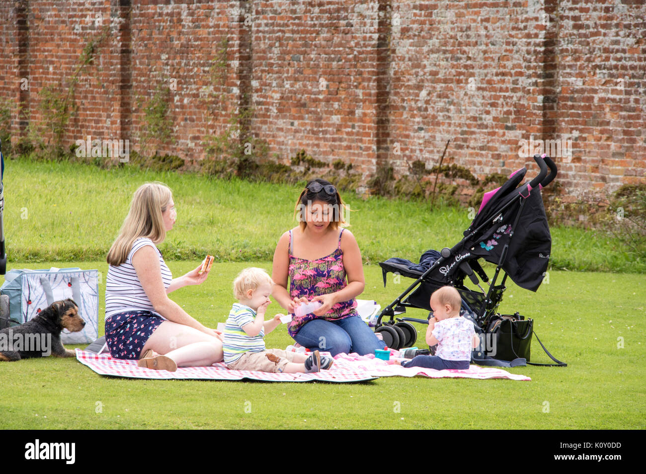 Two mothers with babies having a summer picnic, England, UK - Stock Image