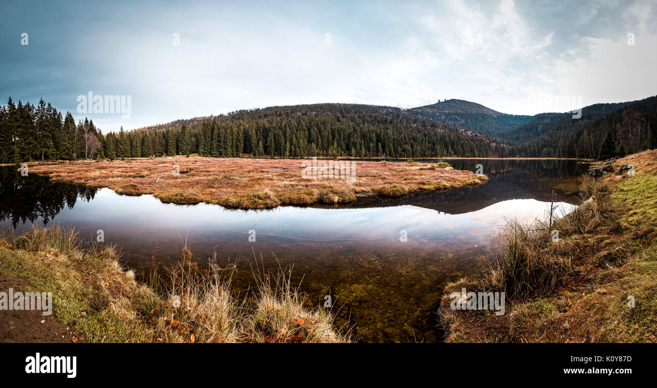 Small Arbersee, Bavarian Forest National Park, Bavaria, Germany - Stock Image