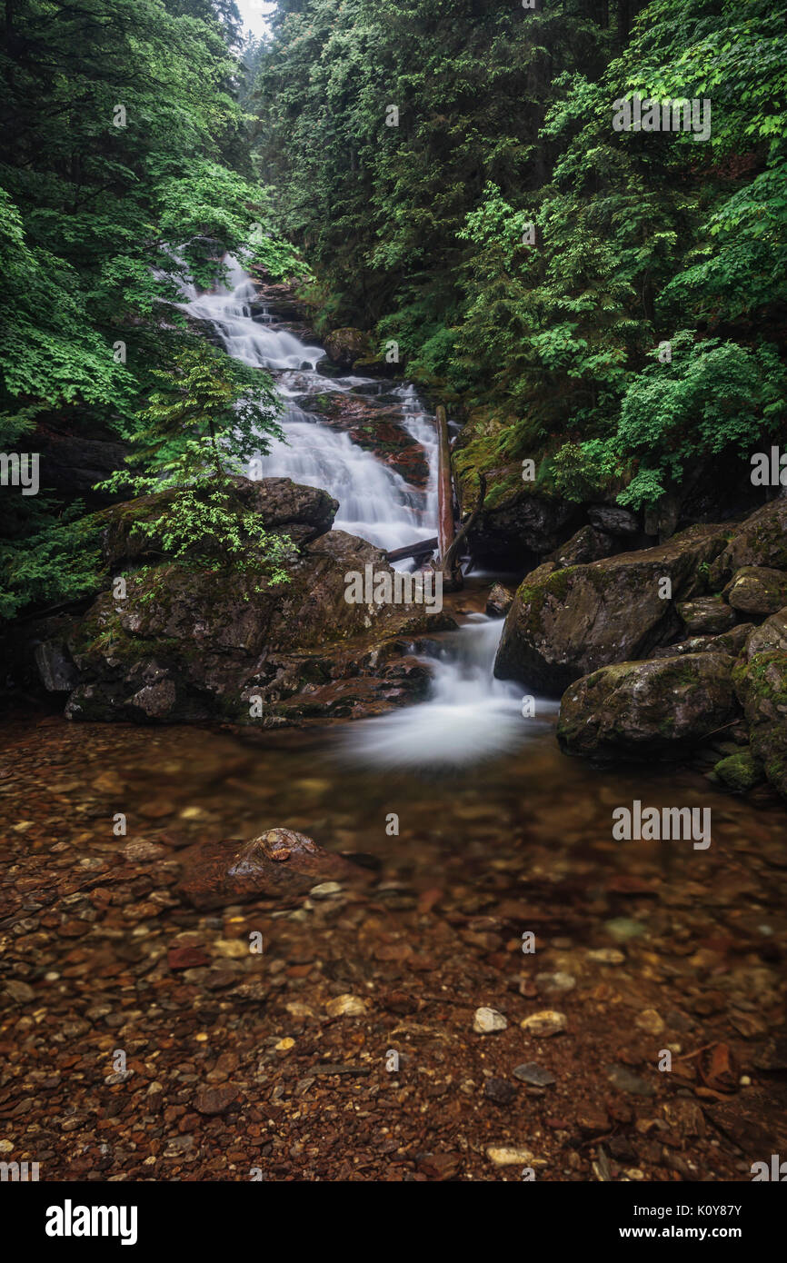 Rissloch waterfall in Bodenmais, Bavarian Forest National Park, Bavaria, Germany - Stock Image
