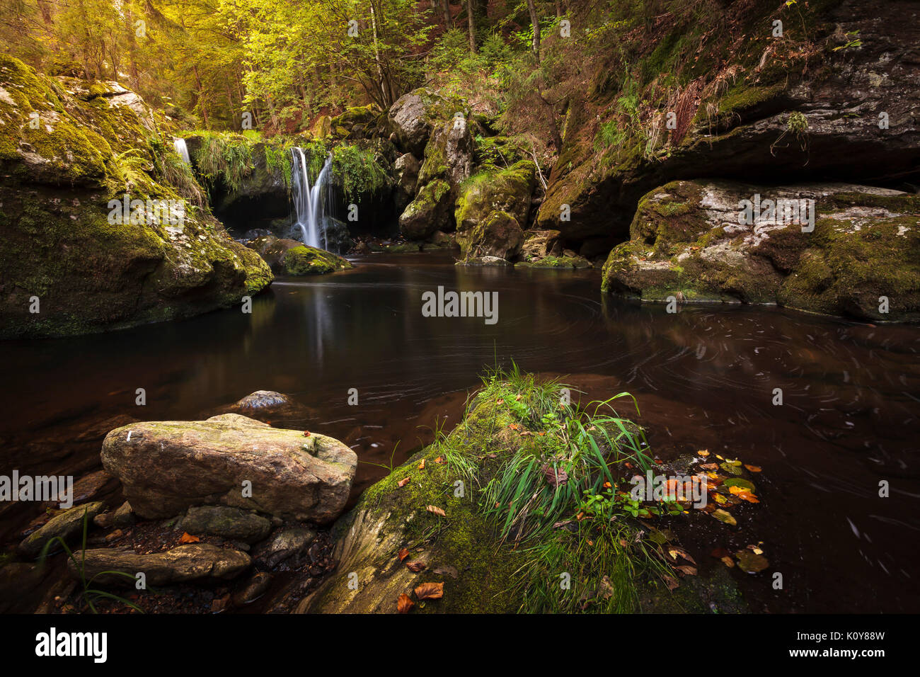 Autumnal mood at the waterfall, Steinklamm, Spiegelau, Bavarian Forest National Park, Bavaria, Germany - Stock Image
