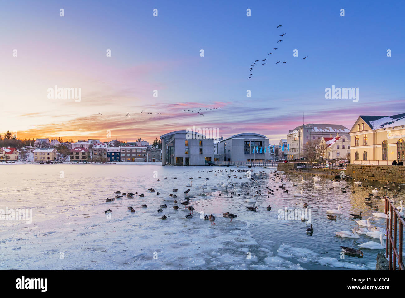 Winter, Reykjavik Pond Frozen, Iceland - Stock Image