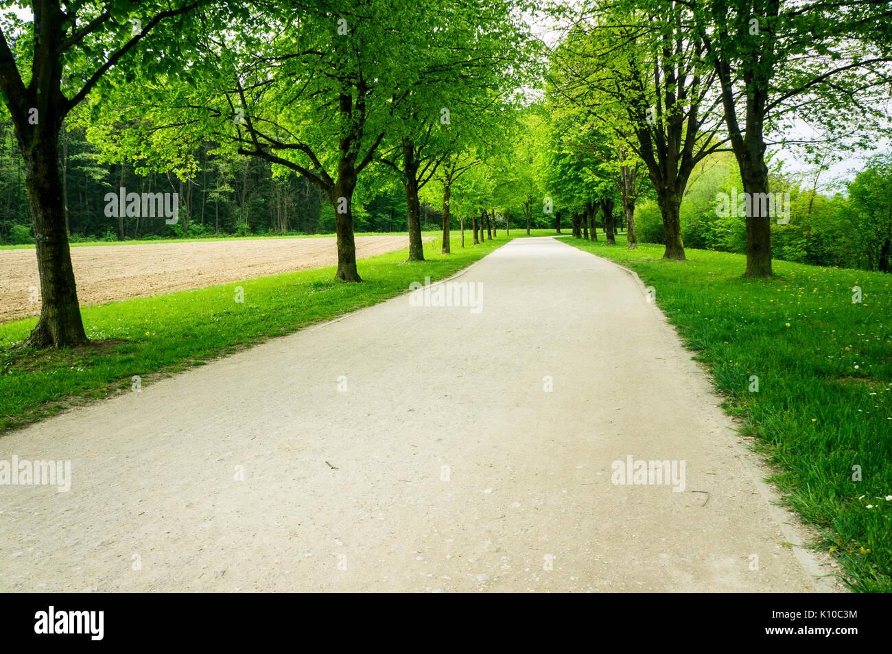 The Trail of Remembrance and Comradeship in Ljubljana, Slovenia - Stock Image