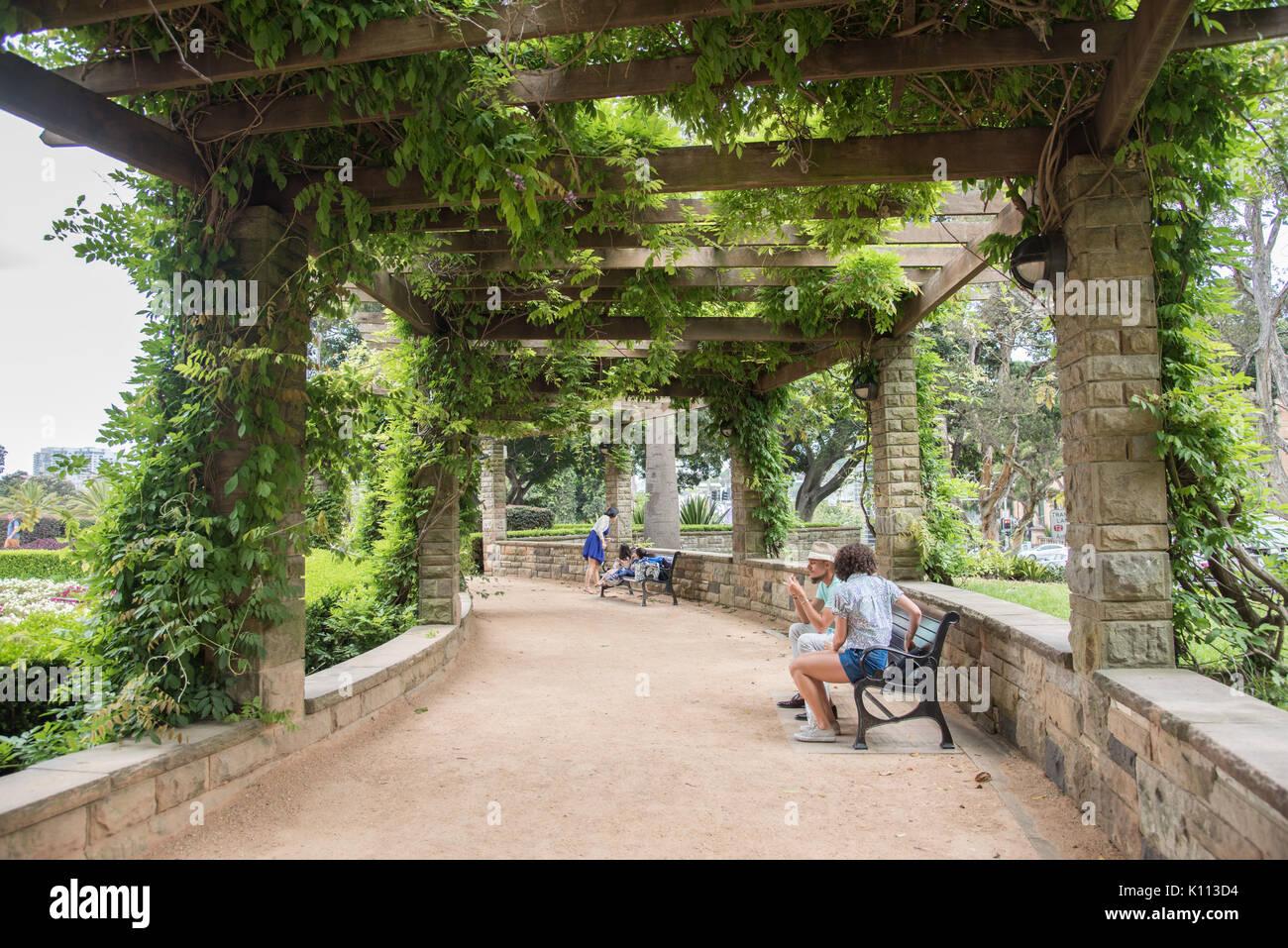 SYDNEY,NSW,AUSTRALIA-NOVEMBER 19,2016: People enjoying a break under vine covered pergola's at Sandringham Gardens in Hyde Park in Sydney, Australia - Stock Image