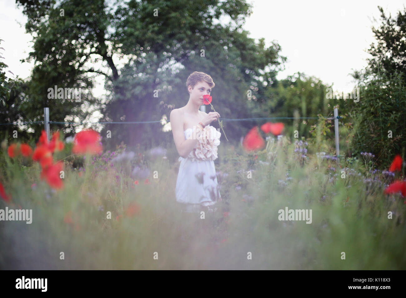 Young woman with poppies in a garden - Stock Image