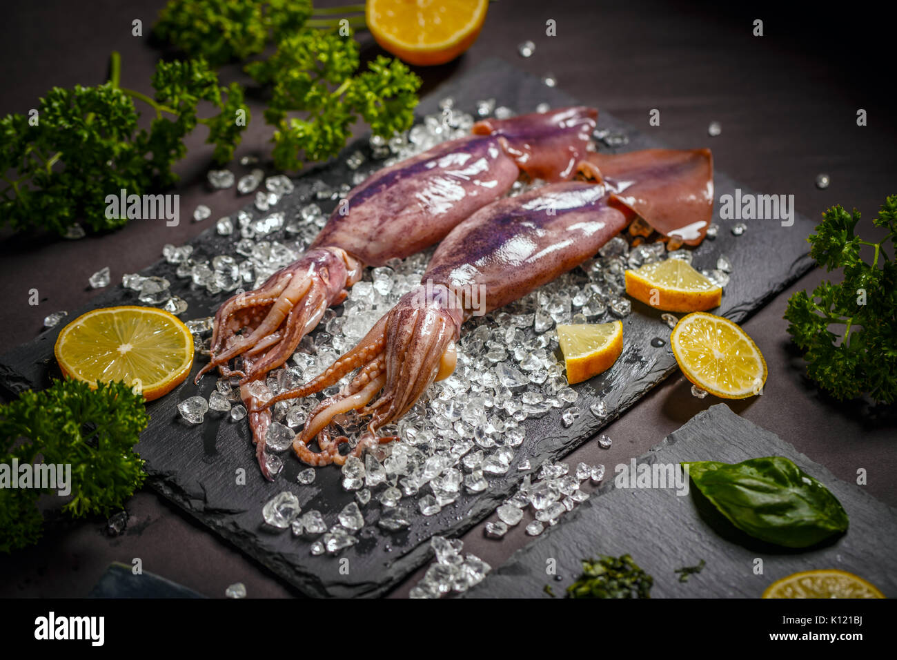Fresh squid on crushed ice - Stock Image