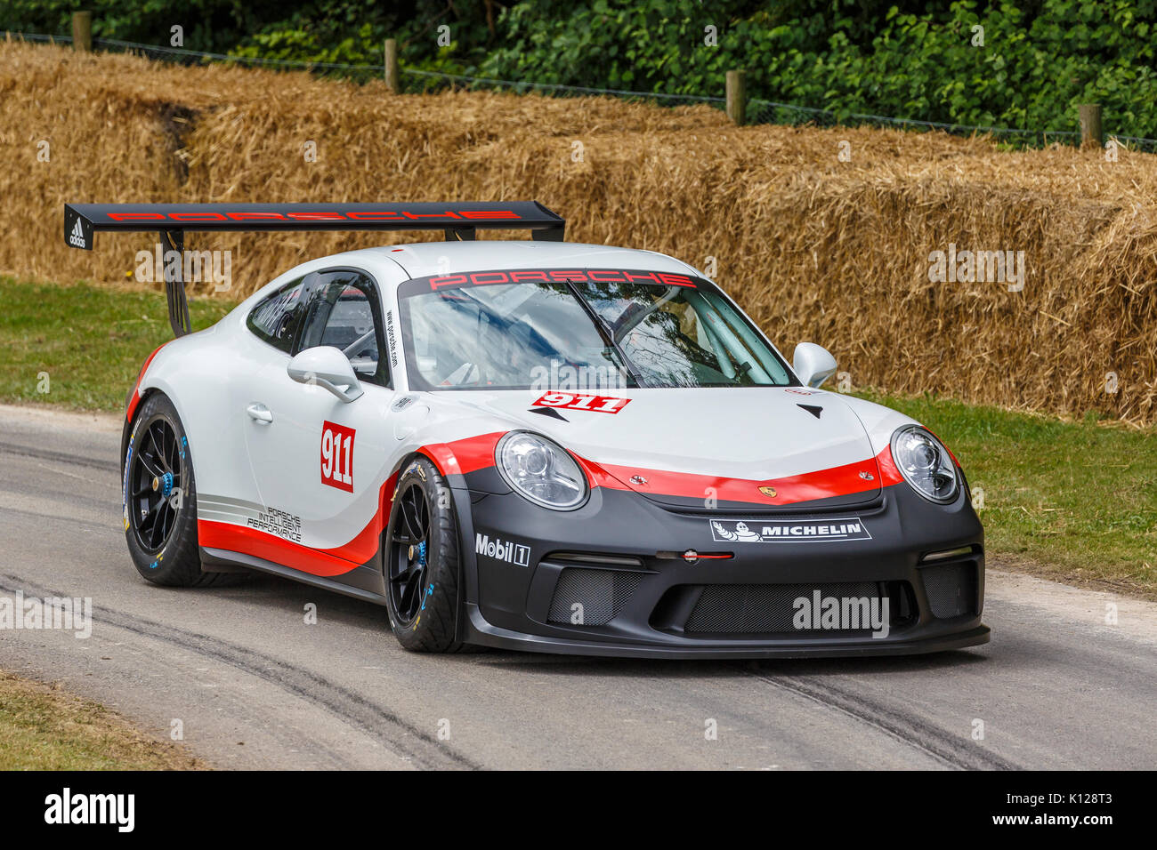 2017 porsche 911 gt3 cup endurance racer with driver. Black Bedroom Furniture Sets. Home Design Ideas