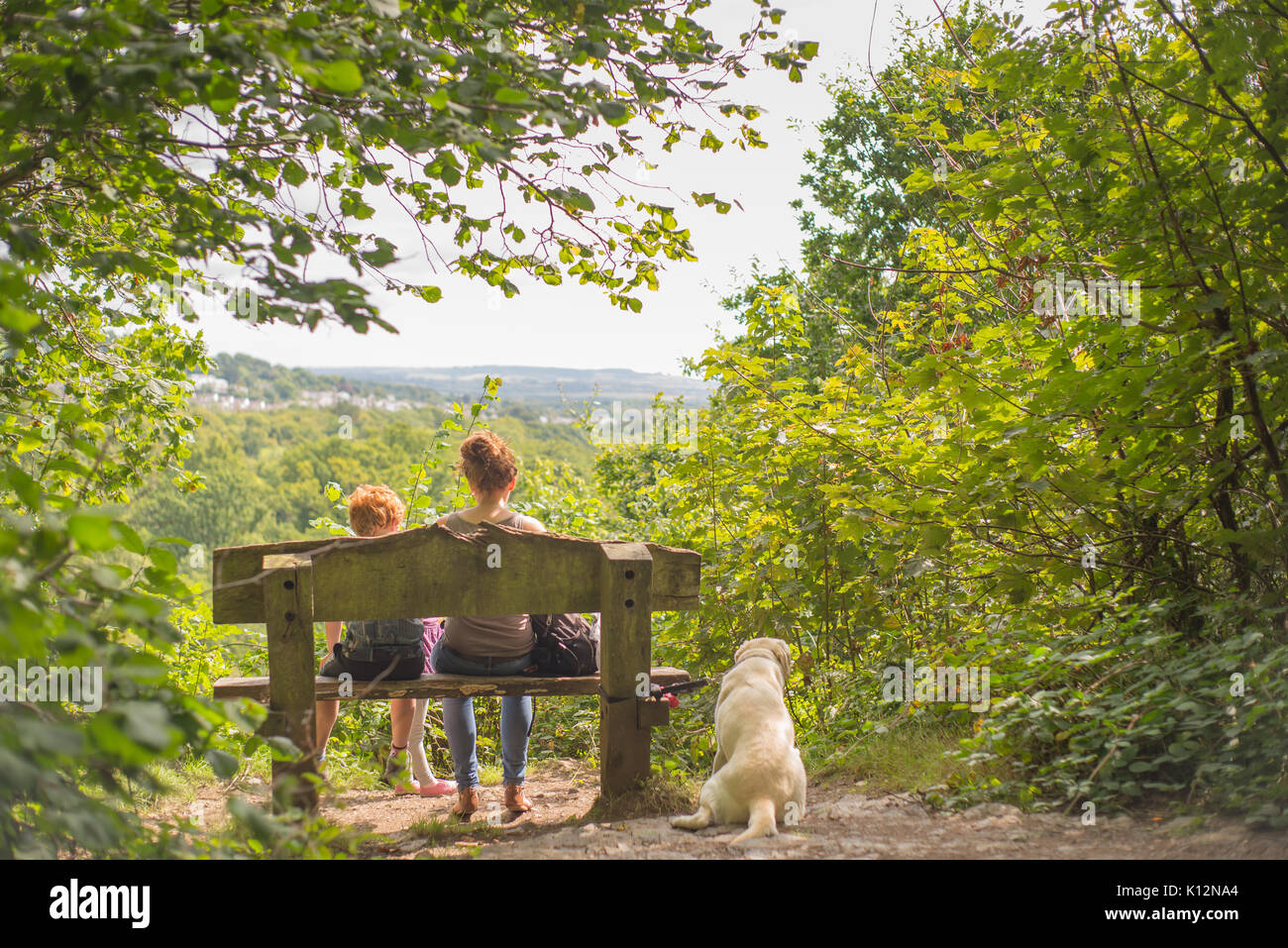 Family taking a break on a woodland walk - Stock Image
