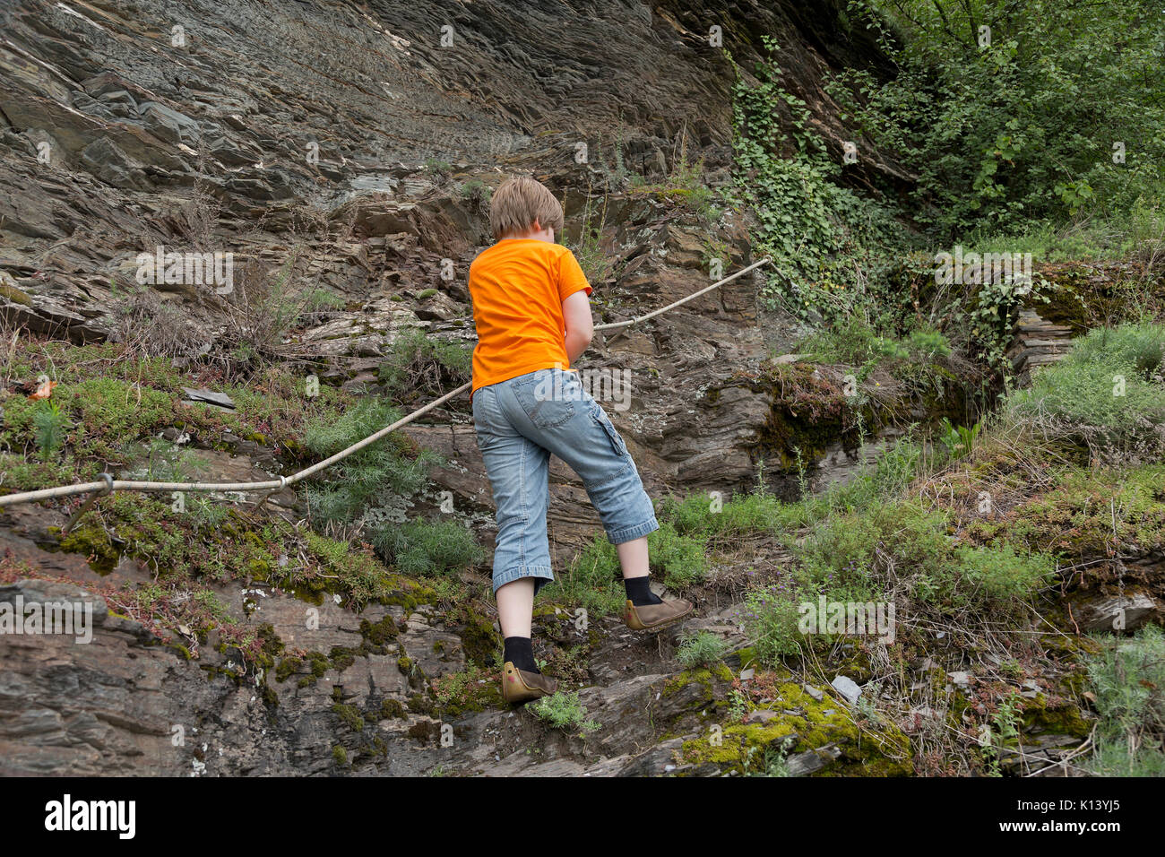 boy on fixed rope route, Uerzig, Moselle, Rhineland-Palatinate, Germany - Stock Image