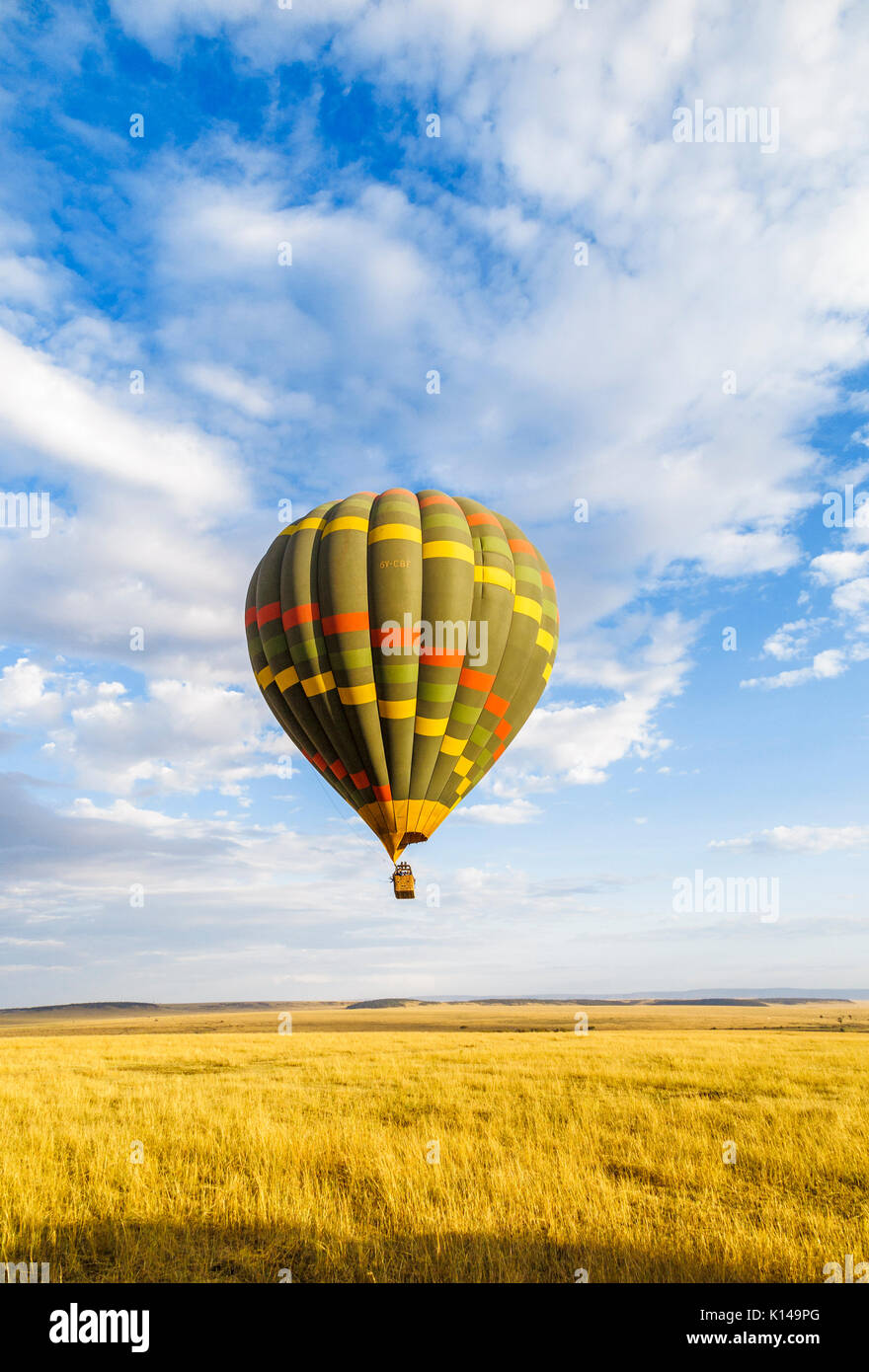 Early morning sightseeing and safari game viewing by colourful green hot-air balloon over the savannah plain in Masai Mara, Kenya - Stock Image