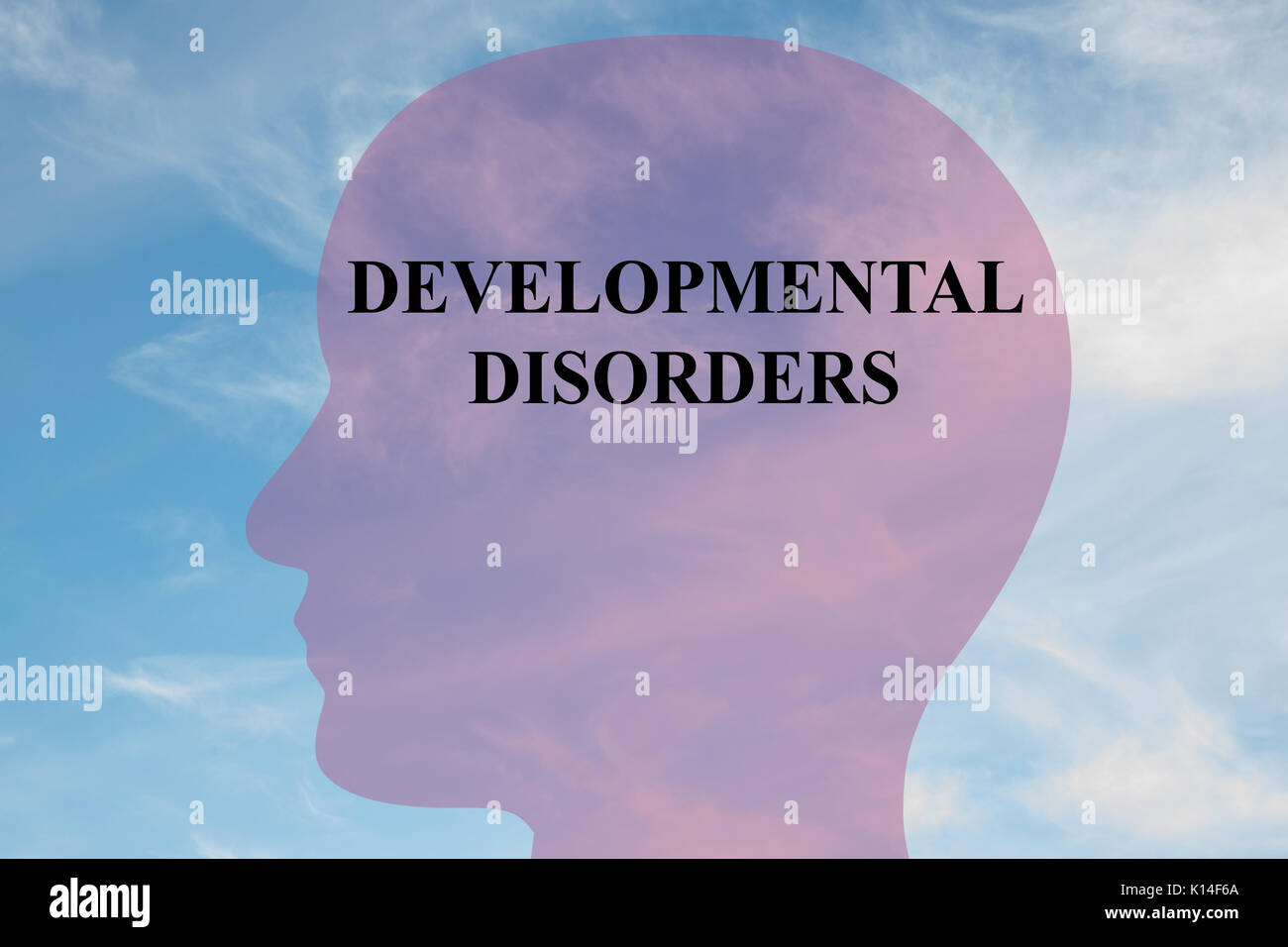 Render illustration of 'DEVELOPMENTAL DISORDERS' title on head silhouette, with cloudy sky as a background. - Stock Image