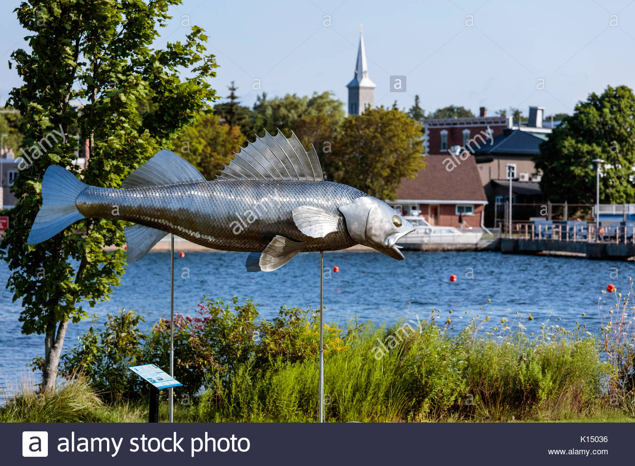 Pisces Pete stainless steel 12 foot long metal fish Walleye roadside attraction in Pisces Park Hastings Ontario Canada, Bill Lishman Artist - Stock Image