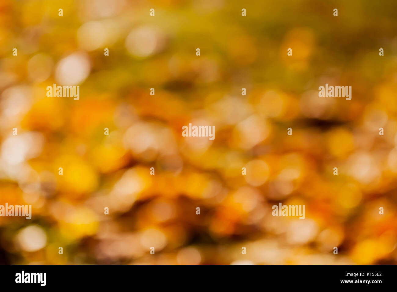 Natural Blur Golden Bokeh Leaf Wallpaper Autumn Background
