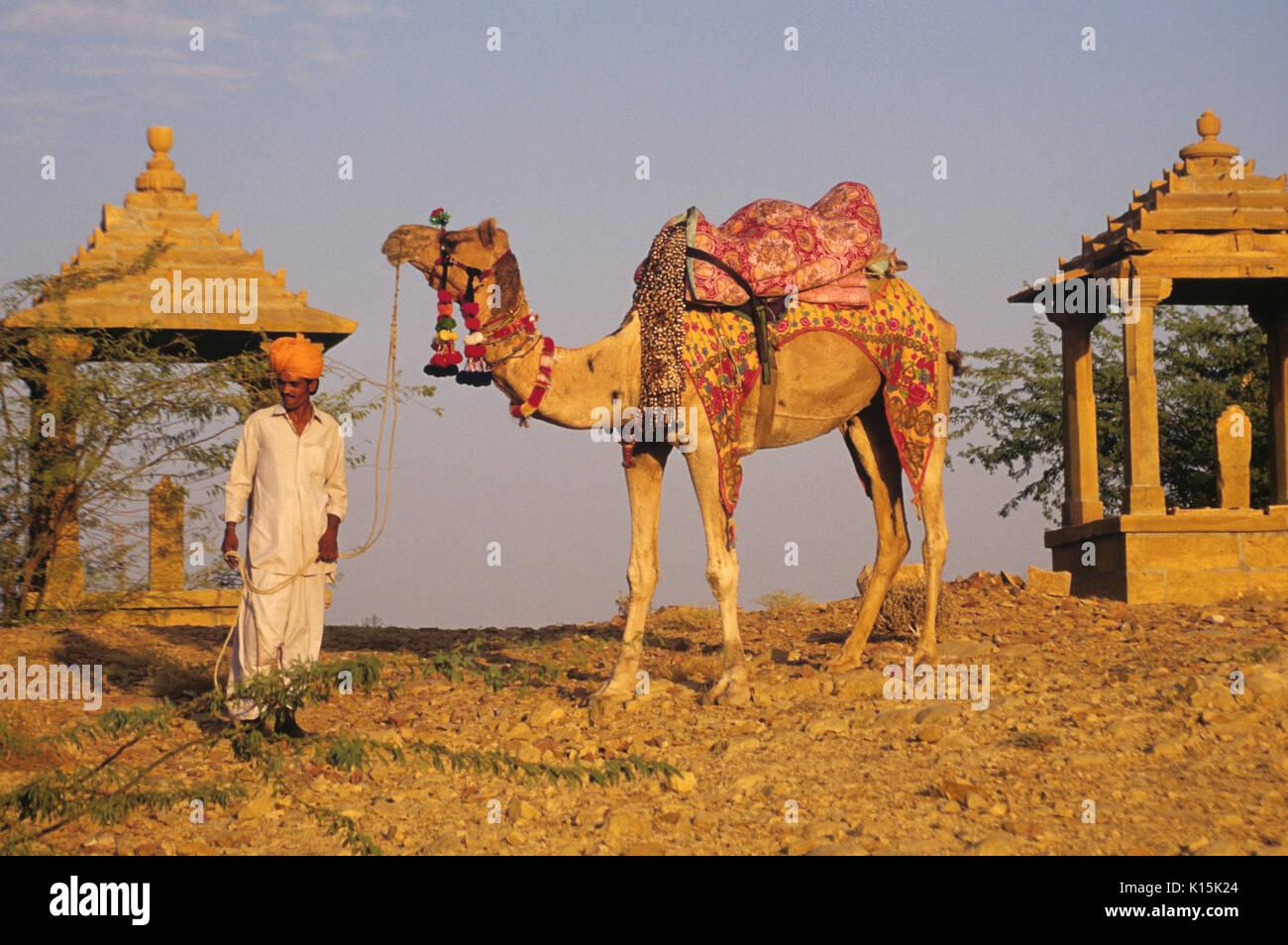 Rajasthani man with camel at Bada Bagh royal cenotaphs, Jaisalmer, Rajasthan, India - Stock Image