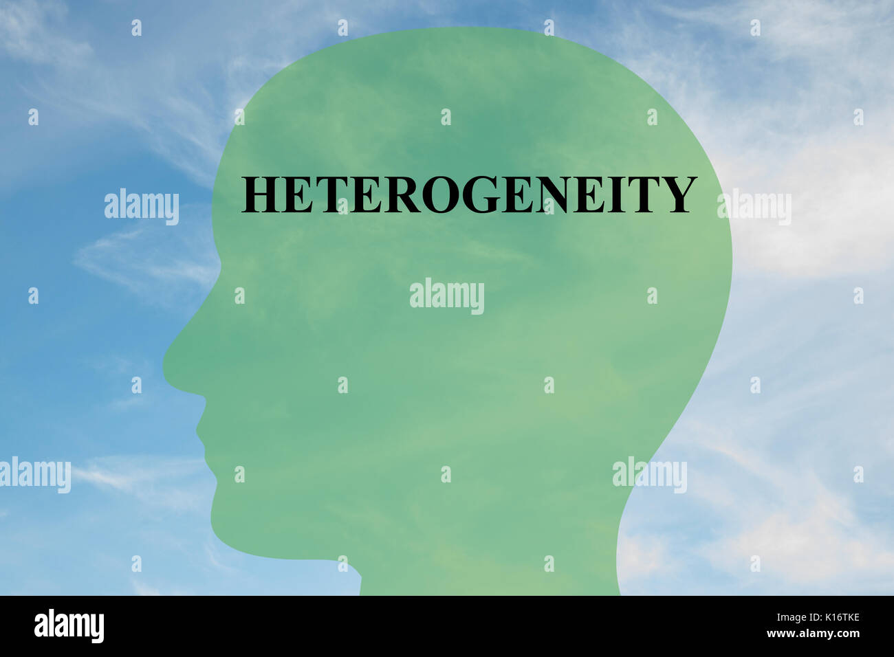 """Render illustration of """"HETEROGENEITY"""" script on head silhouette, with cloudy sky as a background. Stock Photo"""