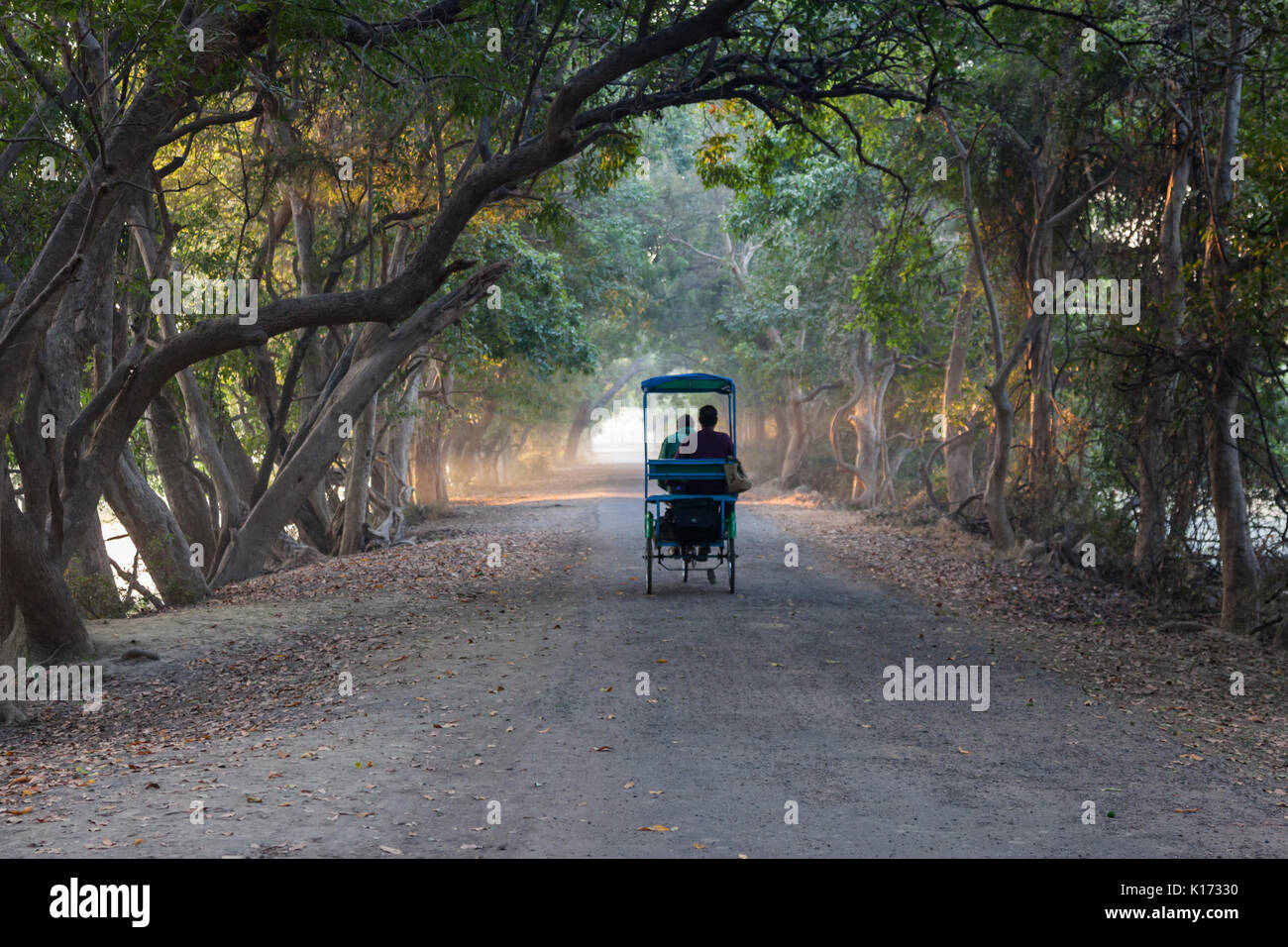 Birdwatching in rickshaw at Bharatpur Bird Sanctuary in Rajasthan, India. - Stock Image