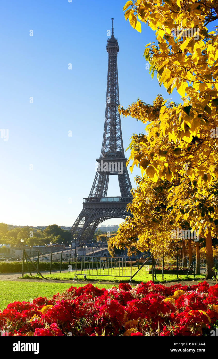 Sunny morning and Eiffel Tower, Paris, France - Stock Image