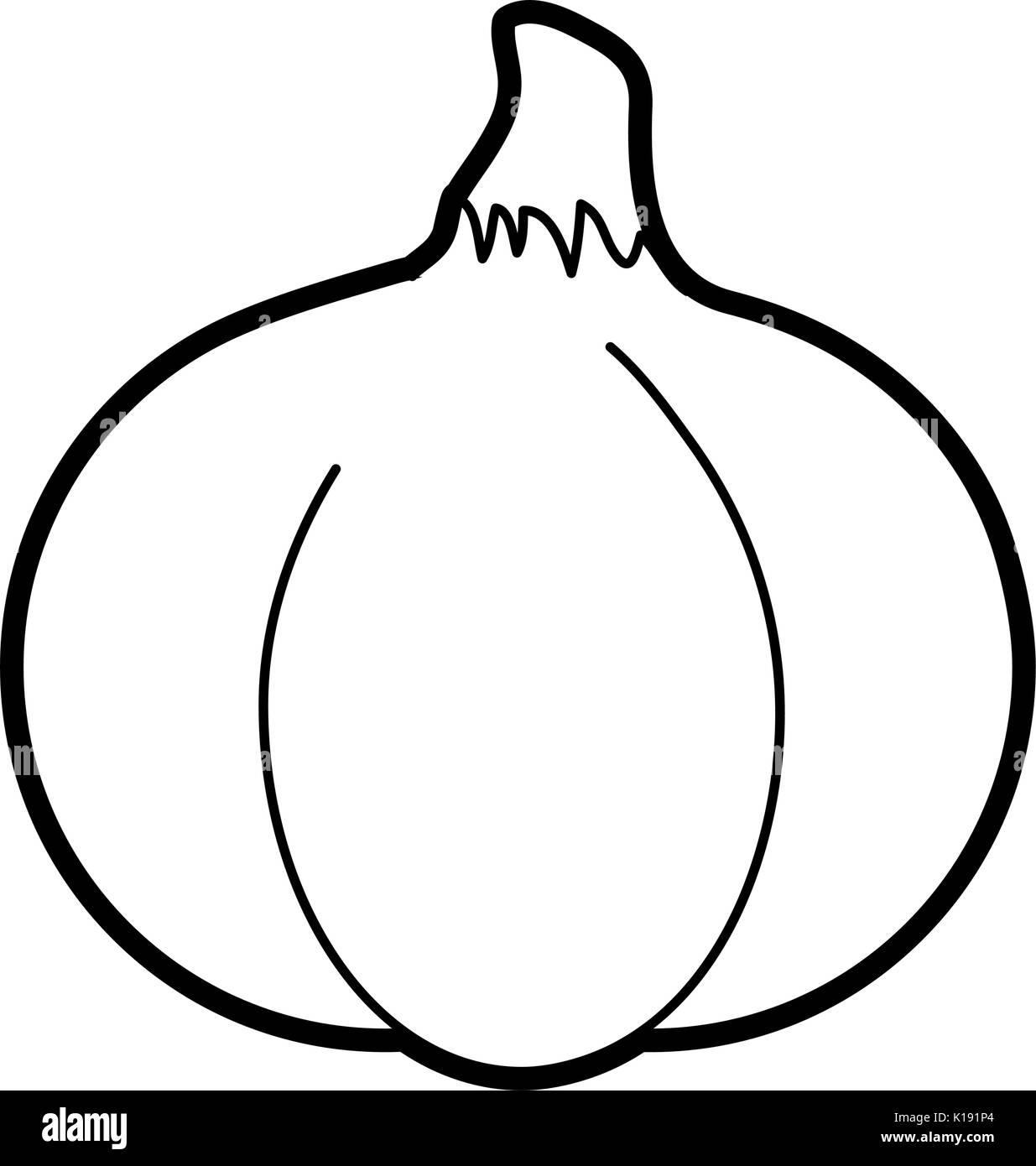 Spicy garlic vegetable - Stock Vector