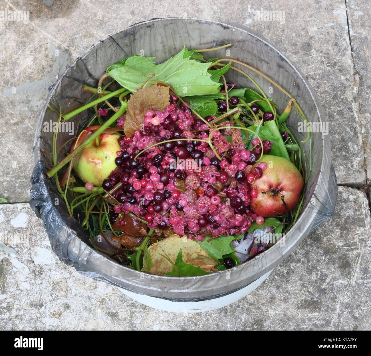 Trench Composting With Kitchen Scraps: Organic Waste Kitchen Stock Photos & Organic Waste Kitchen