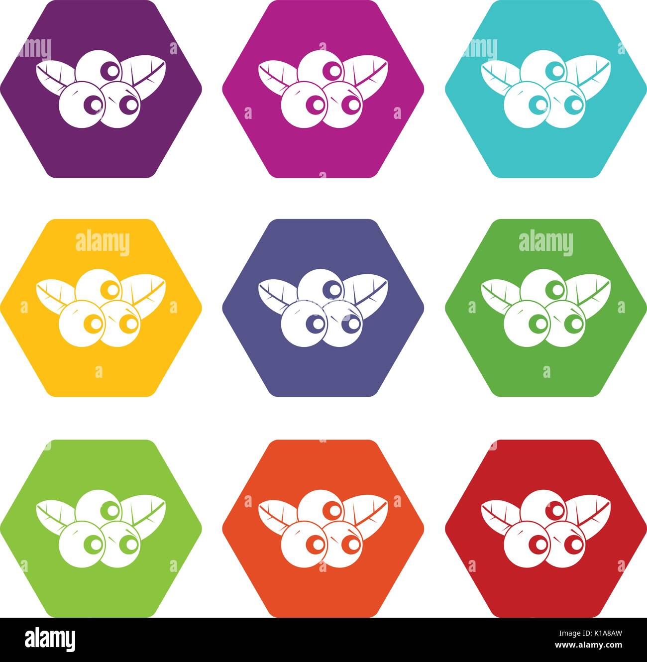 Blueberries icon set color hexahedron - Stock Vector