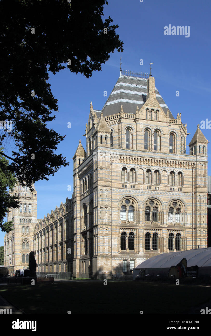 natural history museum south kensington london - Stock Image
