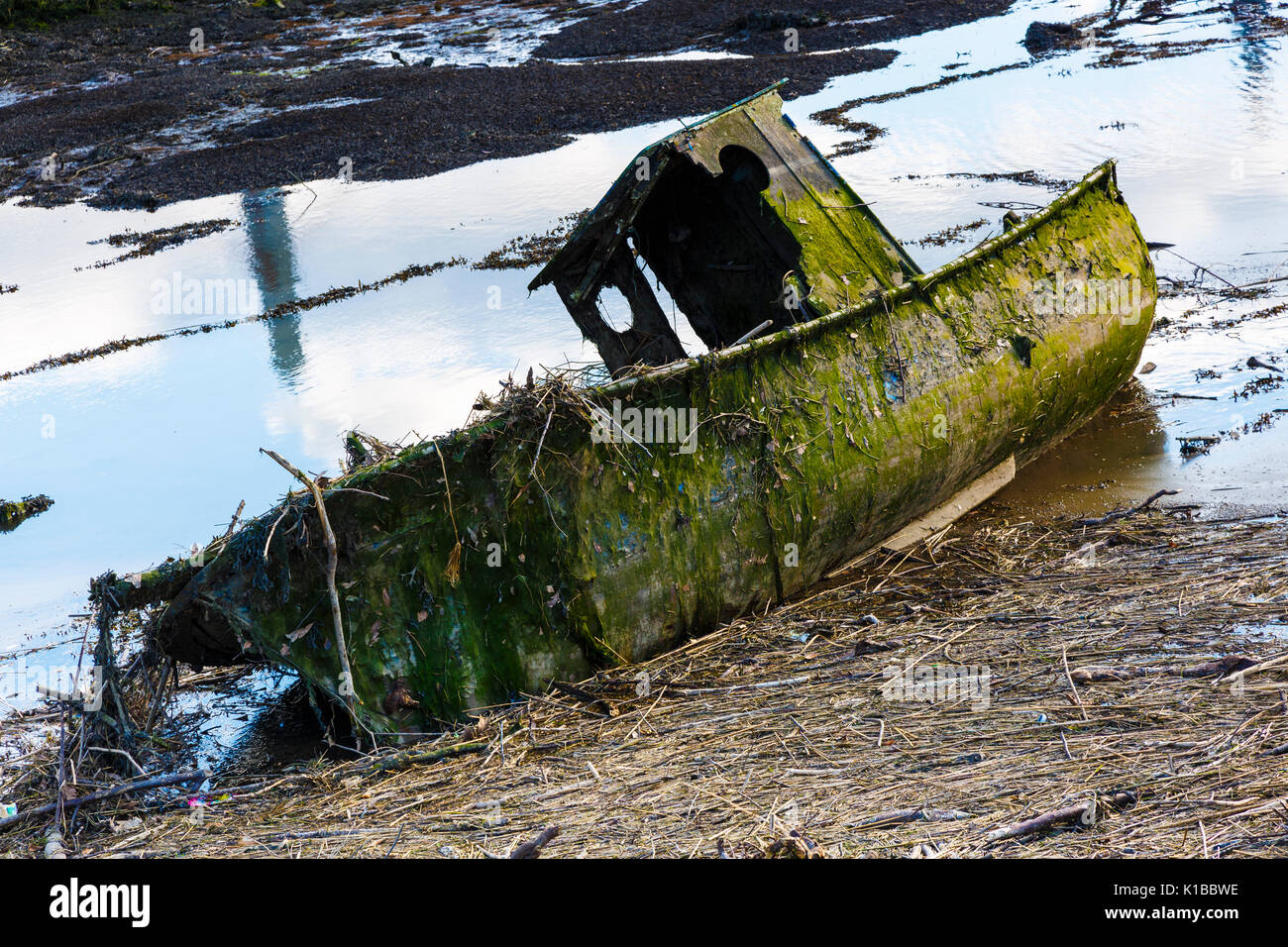 Old boat and tidal waste. Colindres, Cantabria, Spain. - Stock Image