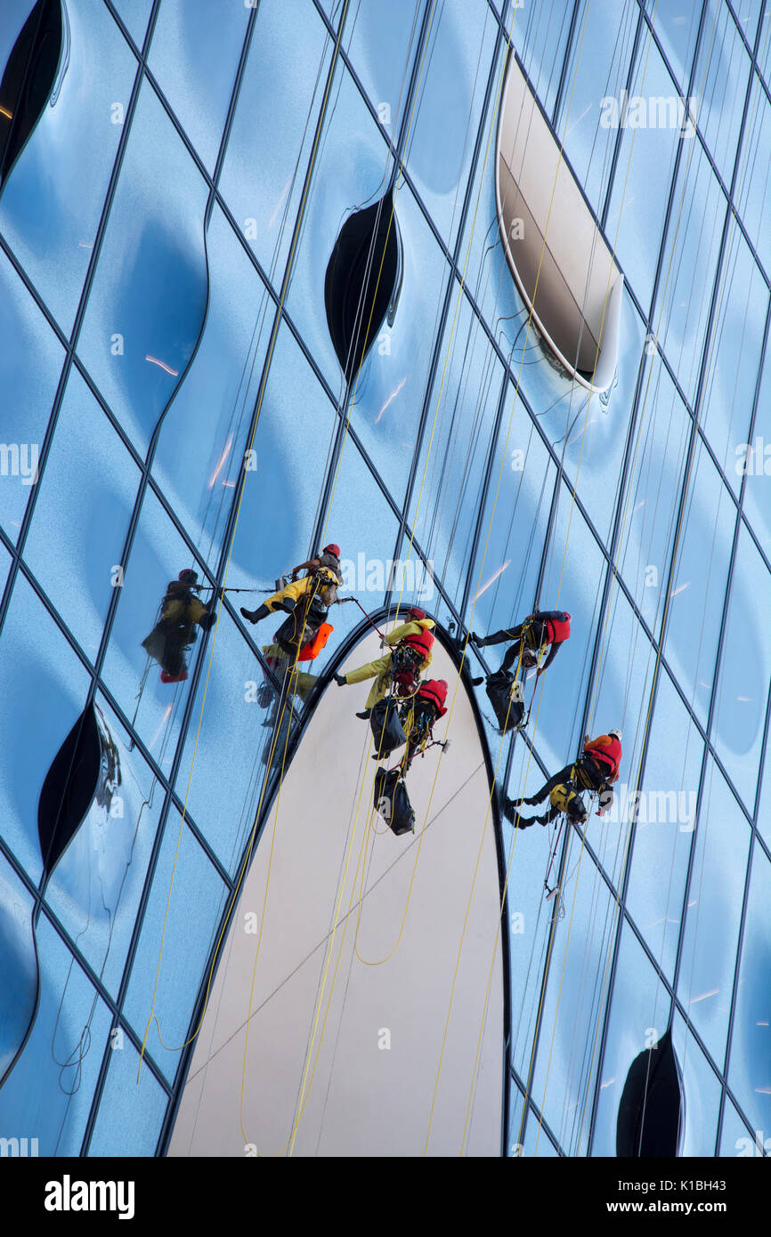 Abseiling window cleaners at work on the Elbphilharmonie concert hall, Hamburg, Germany Stock Photo