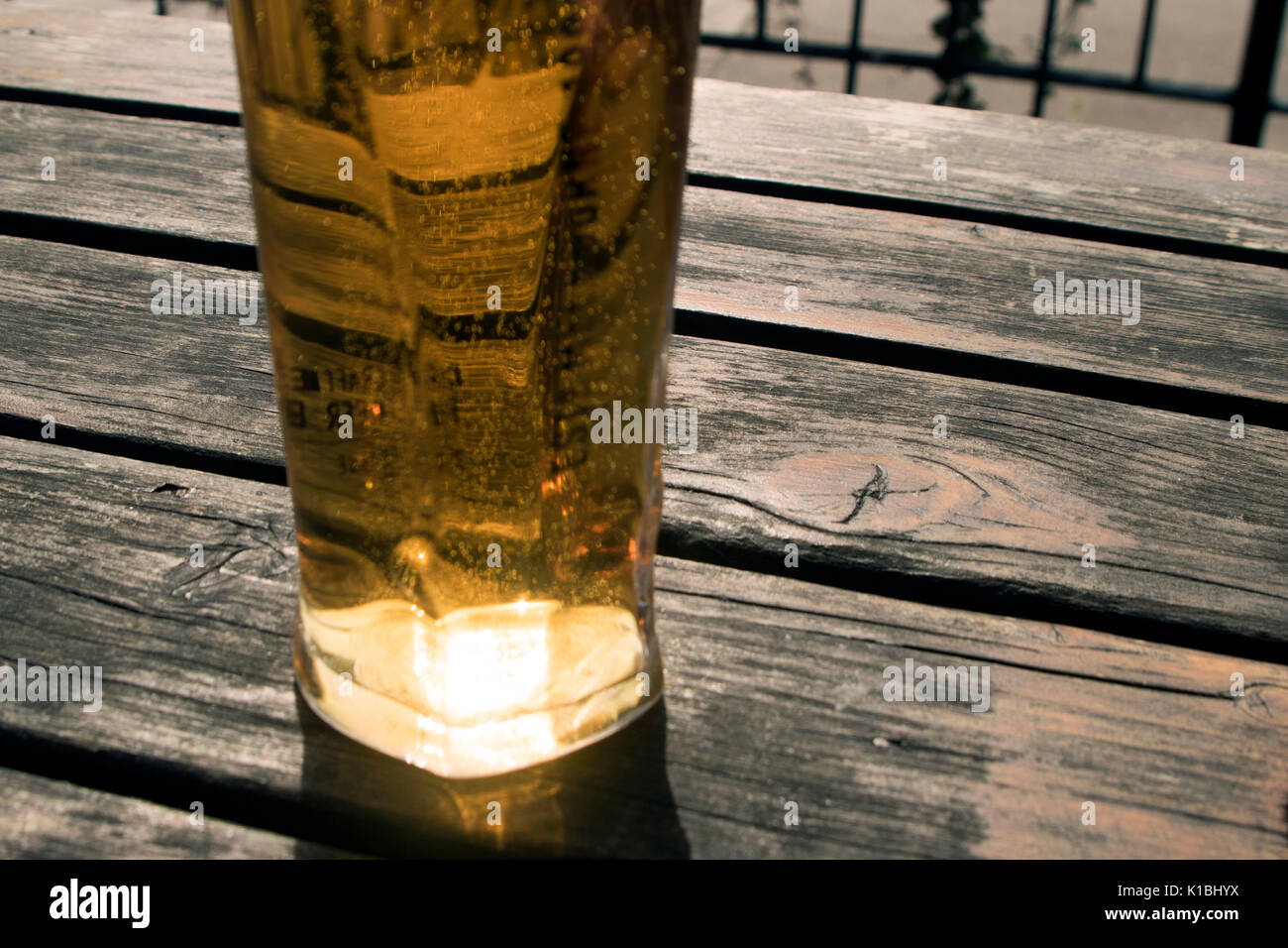A pint of lager on a beer garden table - Stock Image