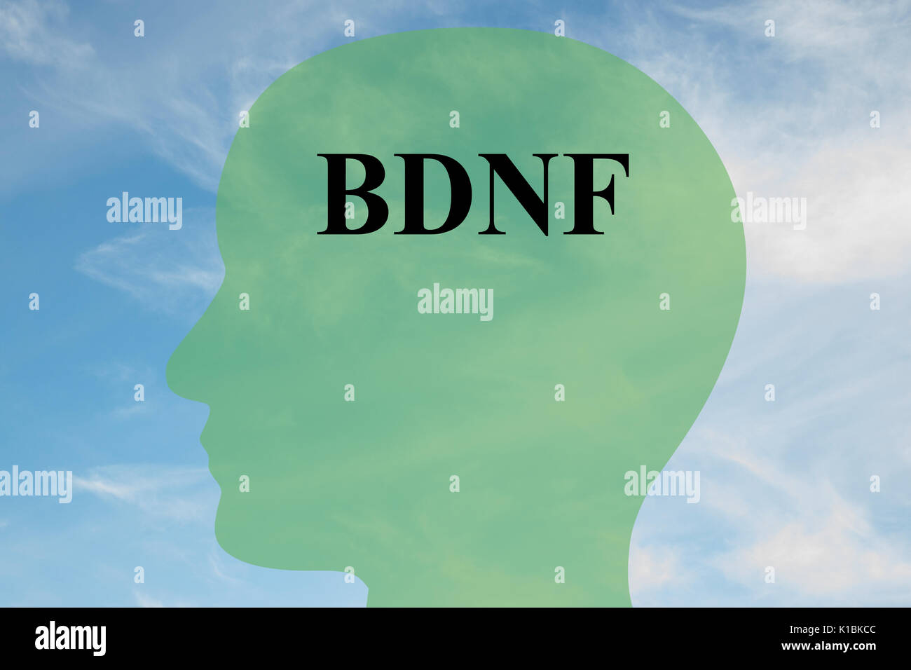 Render illustration of BDNF title on head silhouette, with cloudy sky as a background - Stock Image