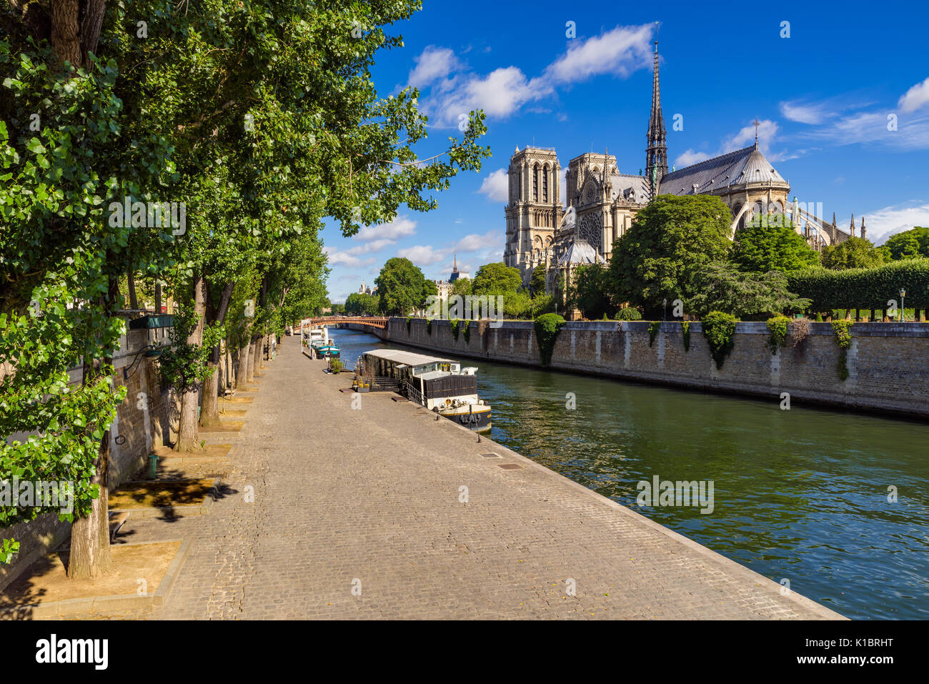 Notre Dame de Paris cathedral on Ile de La Cite with the Seine River and Quai de Montebello in summer. Paris, France - Stock Image