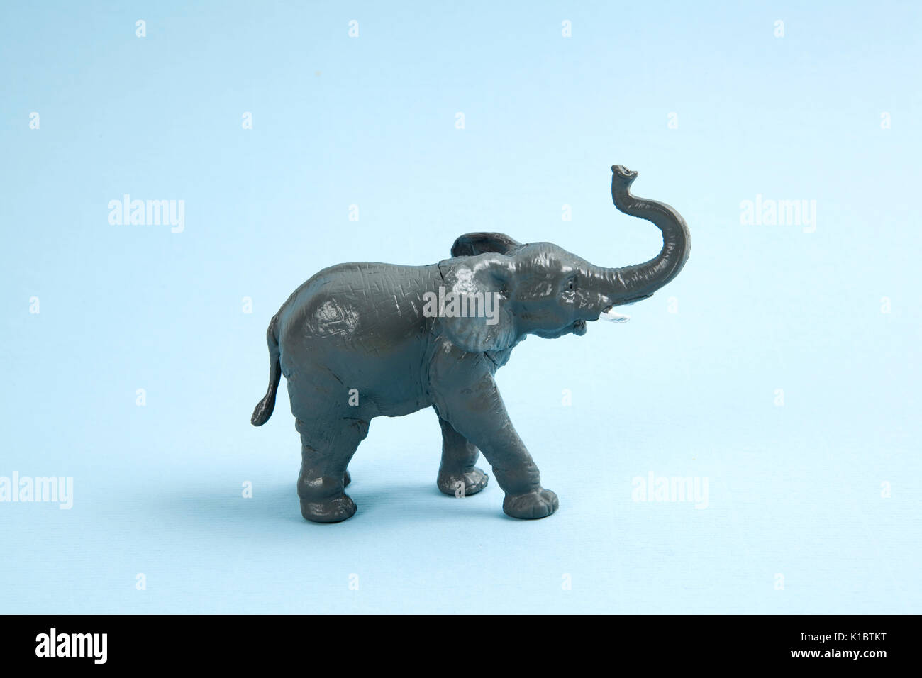a plastic elephant on a vibrant blue background. Minimal color still life photography - Stock Image