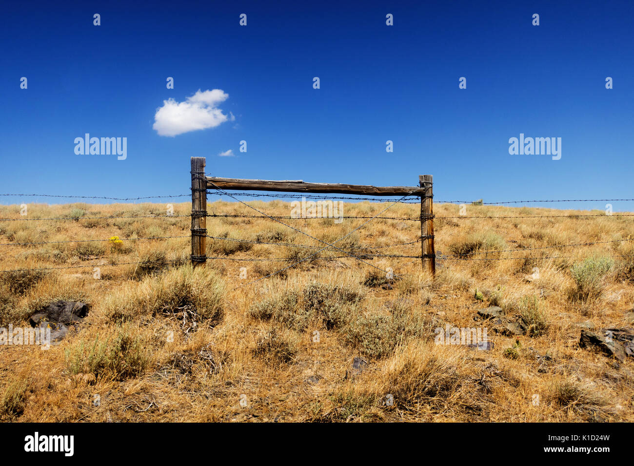 A single cloud hanging over a barbed wire fence in the middle of the desert in Utah. - Stock Image