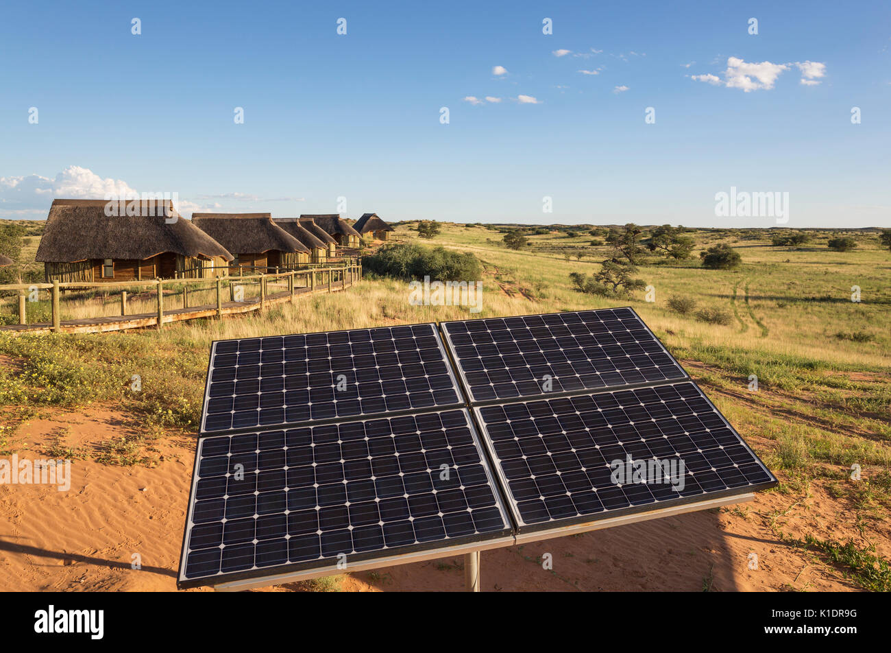 Solar panels near chalets of Rooiputs Lodge, rainy season with green surroundings, Kalahari Desert, Kgalagadi Transfrontier Park - Stock Image