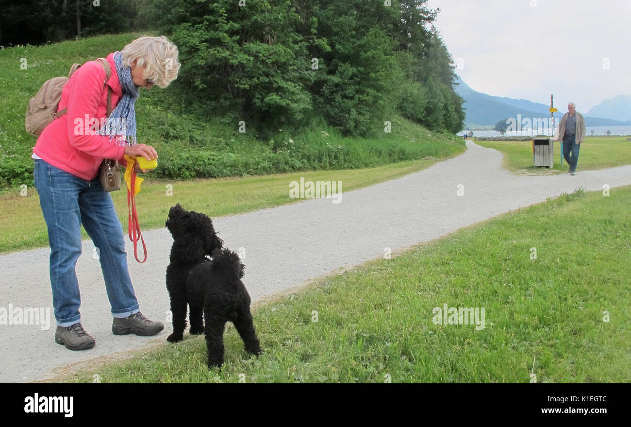 Graubunden, Switzerland. 21st July, 2017. Picture of Christa Alder and her dog Henry, taken at a meadow near Sils lake in the canton of Graubunden, Switzerland, 21 July 2017. Picking up Henry's s waste is par for the course for Christa even in fields, meadows and hiking trails. Photo: Christiane Oelrich/dpa/Alamy Live News - Stock Image