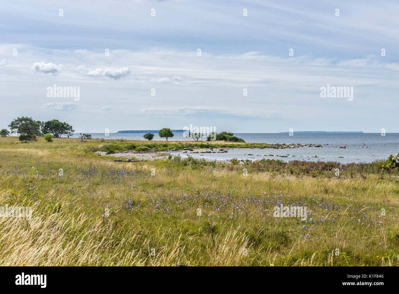 Big and Little Karlsö Islands seen from Västergarn, Gotland - Stock Image