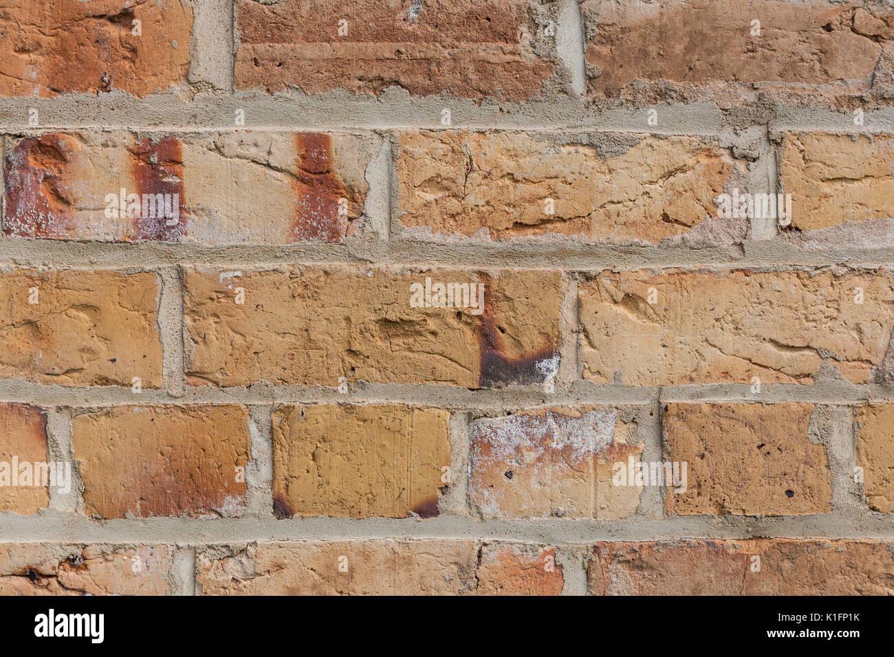 Elegant Yellow Brick Wall Background Texture Closeup Stock