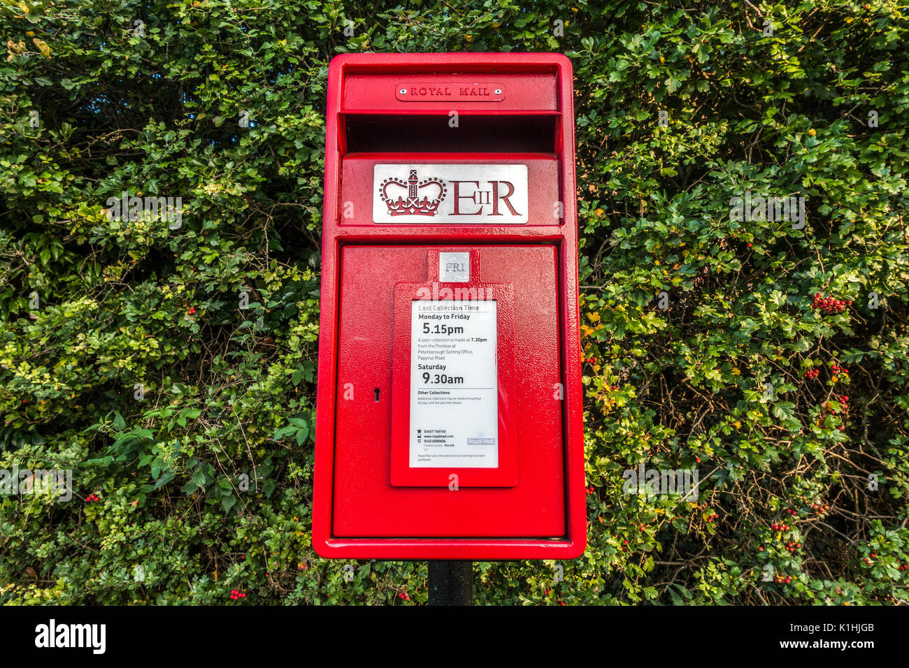 Royal Mail post box, painted bright red and displaying the pickup schedule for this local collection point within the national network. England, UK. - Stock Image