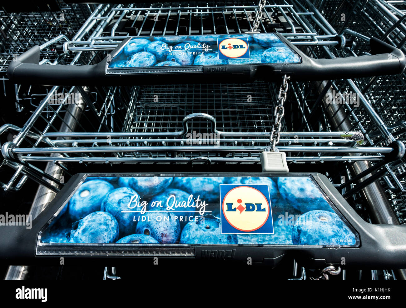Chained and locked shopping trolleys at Lidl supermarket, Bourne, Lincolnshire, England, UK. - Stock Image