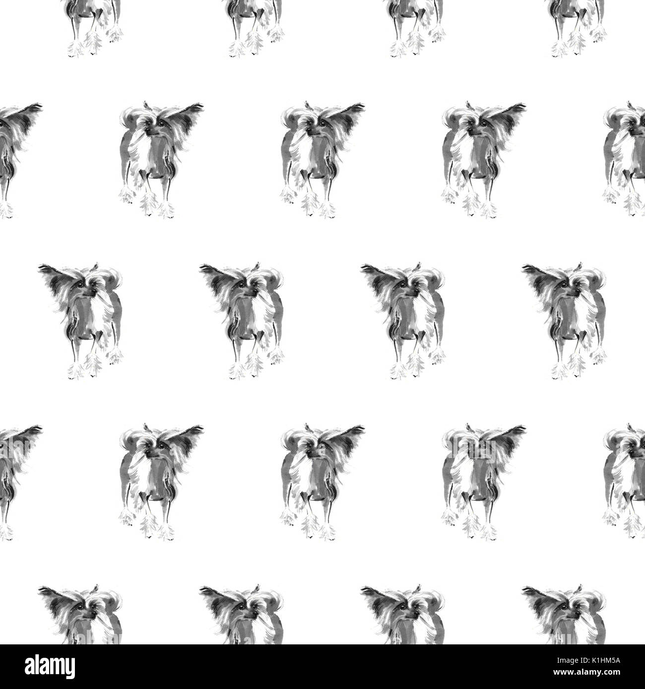 Seamless pattern with Chinees crested dogs, handmade ink painting, isolated on white background. Chinese zodiac background. Textile design. - Stock Image