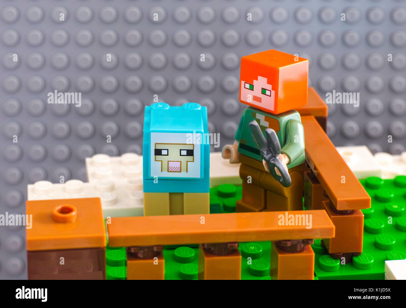 Tambov, Russian Federation - June 25, 2017 Lego Minecraft. Alex with sheep shears ready to shear the dyed sheep. Studio shot. - Stock Image