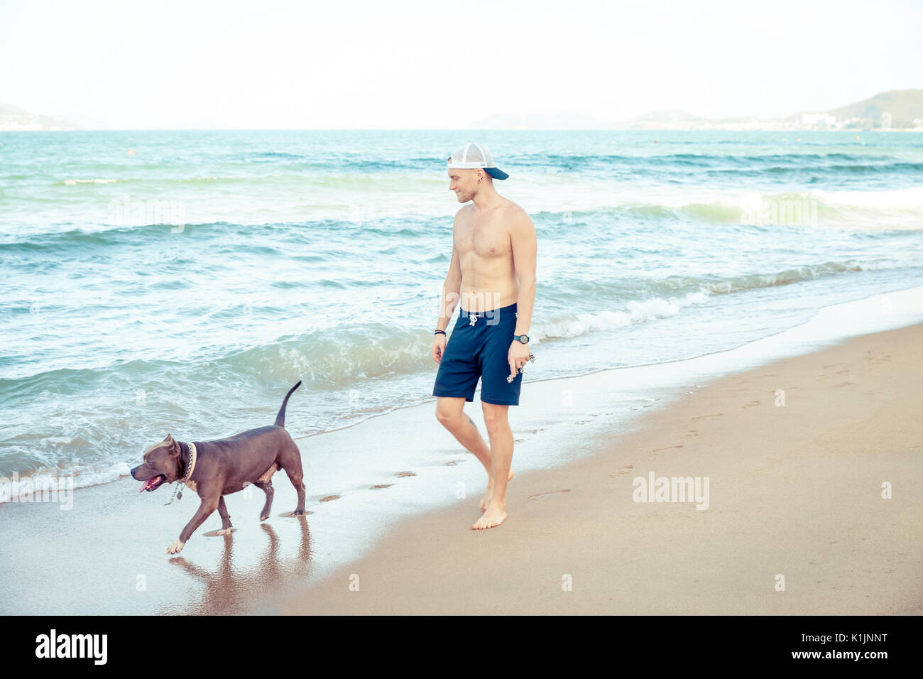 Young man with dog american pit bull terrier walking on the tropical beach - Stock Image