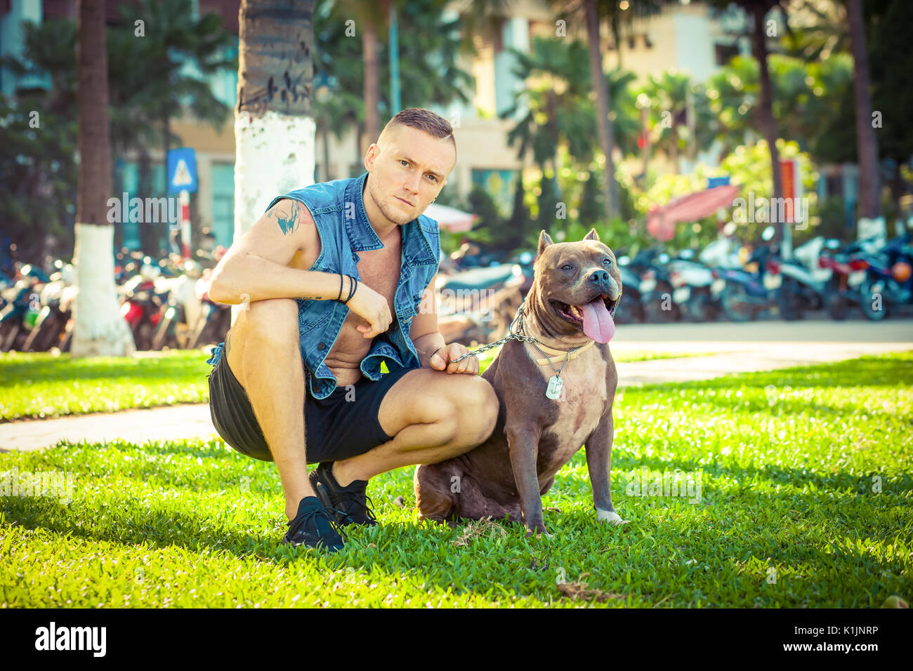 Happy friends man and dog american pit bull terrier sitting on grass in park Stock Photo