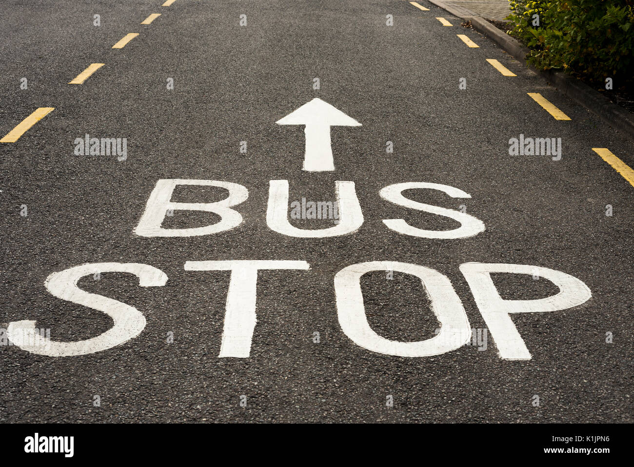 Bus Stop Sign and ahead Arrow painted in white on an asphalt road with yellow markings. - Stock Image