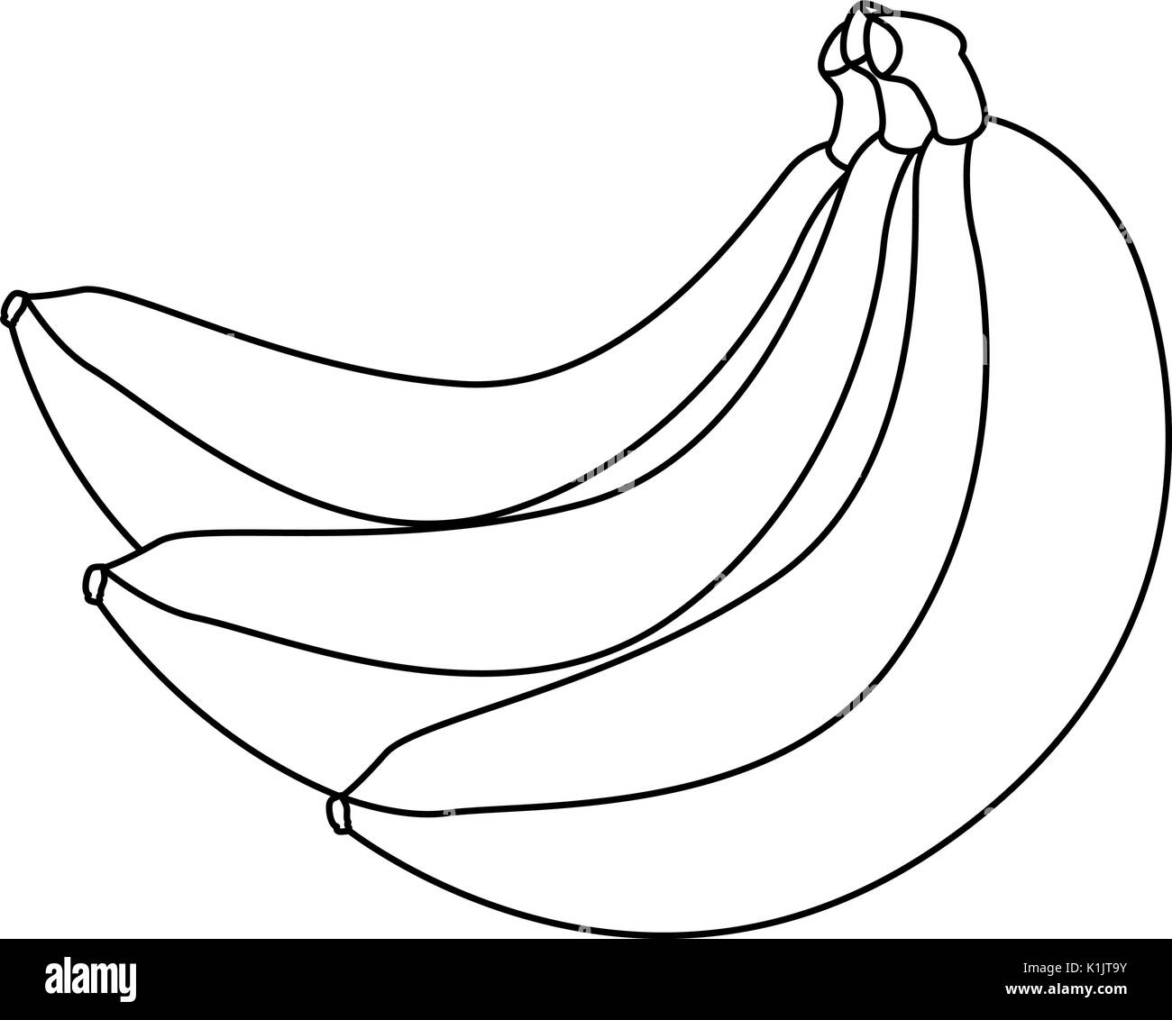 Ripe Bananas Black And White Stock Photos Images Alamy