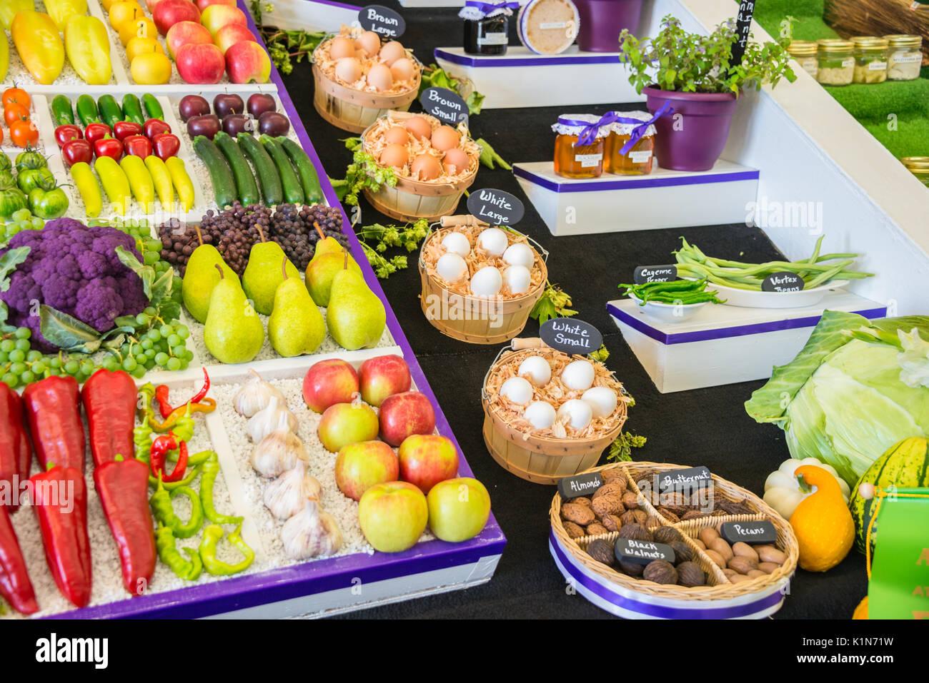 Display Variety Berries Pumpkins Seeds Herbs Grains - Stock Image