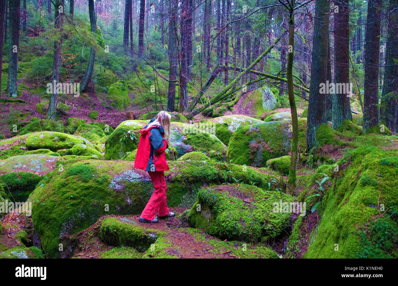 OBERPFALZ, GERMANY - Dec. 16, 2015: Nature Reserve Doost features round granite stones which collected in a brook during the Ice Age. - Stock Image